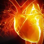Akıl Kalpte Midir?